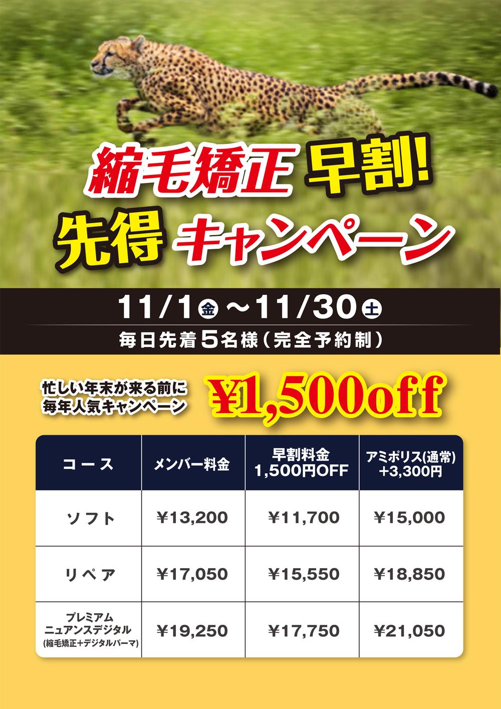 https://pooo.jp/wp-content/uploads/2019/10/1910_Pooo_hayawari.jpg